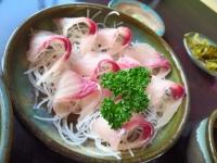 嘉穂 鯉料理