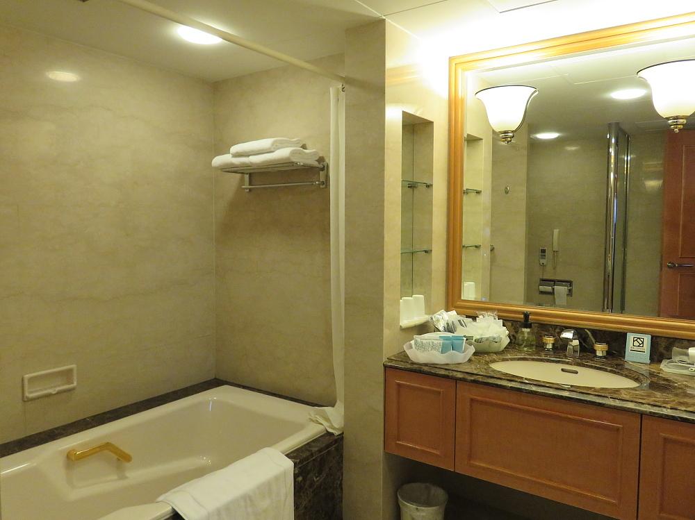 Hotel Nikko Kansai airport 関西空港 日航ホテル デラックスルーム
