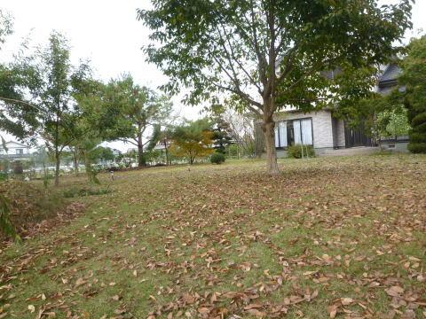 落葉の季節(1)