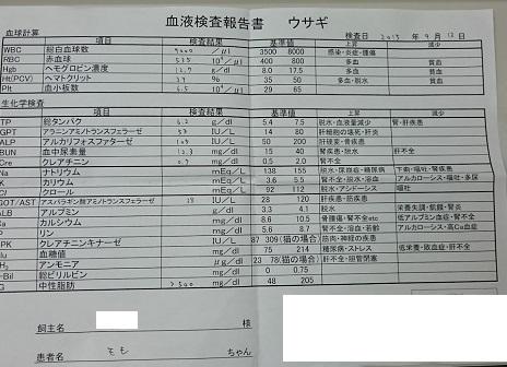 09160-9.jpg