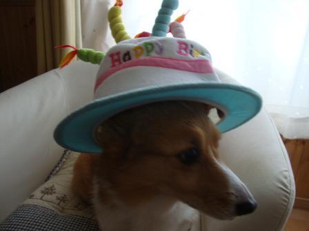 バースデー帽子で2