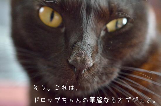 b_DSC5194.jpg