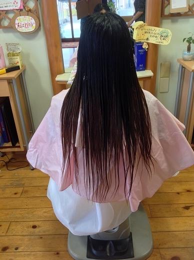 1年分の髪