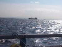 本牧釣り施設