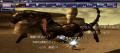 ウォンCL125 ウルピジット vs 獣.png