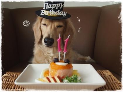 Birthday-5.jpg