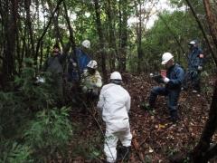 2015毎木調査