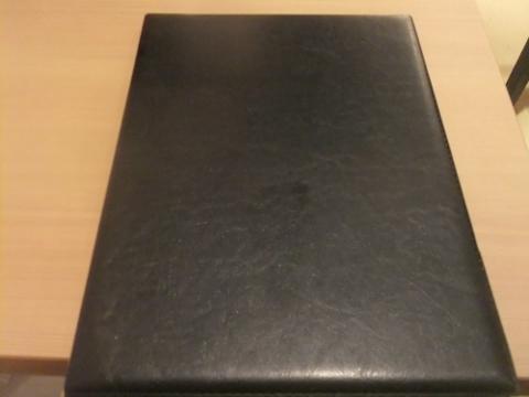 DSCF8199 (480x360)