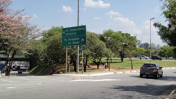 s-イビラプエラ公園とアフロ (46)
