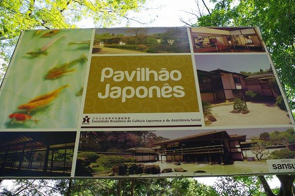 s-イビラプエラ公園とアフロ (5)