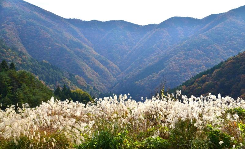 「山村風景5」  (香川県まんのう町)