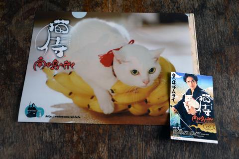 nekozamurai1_090615