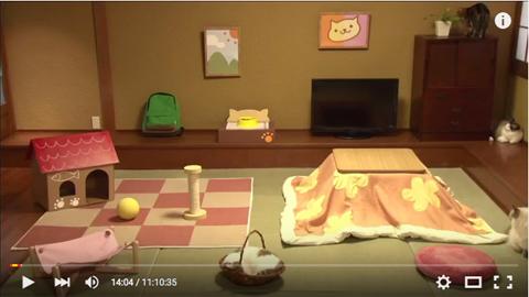 real-nekoatsume_1404