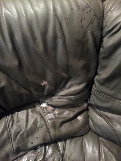 sofa1_102515