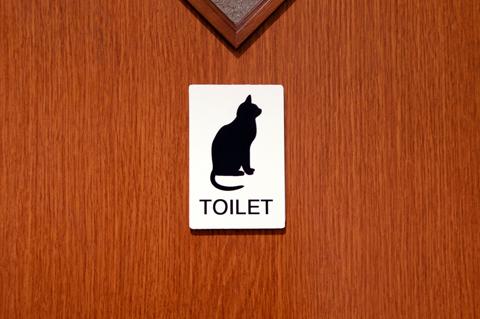 toilet2_101215