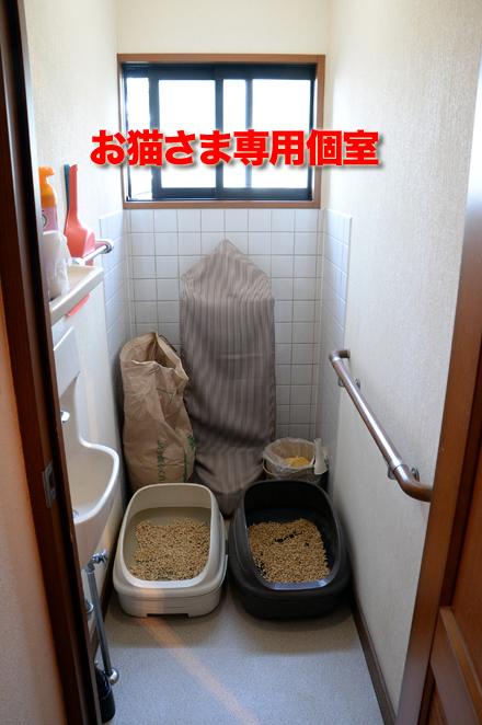 toilet4_101215