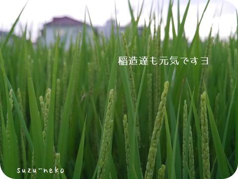 20150901-002.jpg