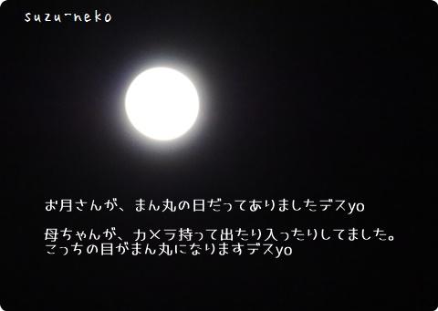 20151006-003.jpg