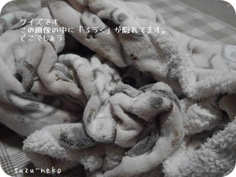 20151026-001.jpg