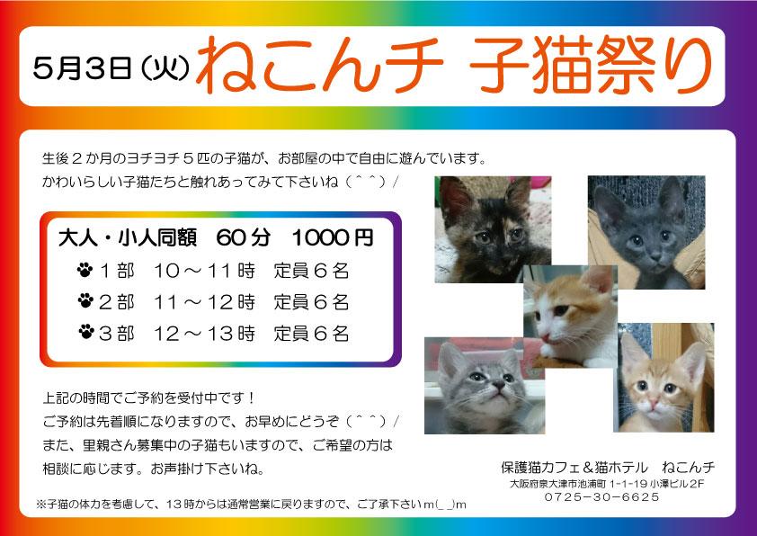 5月3日 子猫祭り チラシ
