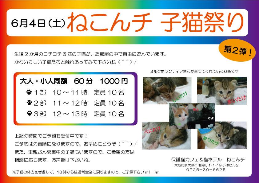 6月4日 子猫祭り チラシ