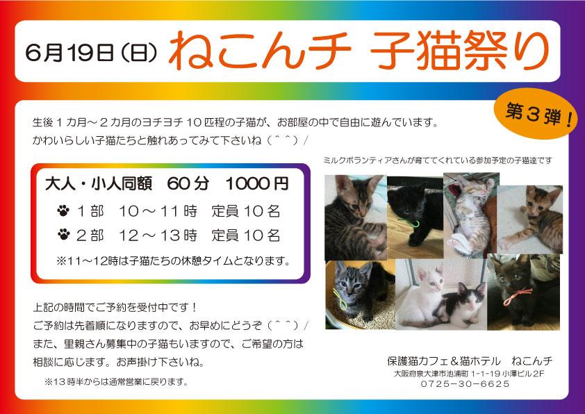 6月19日 子猫祭り チラシ