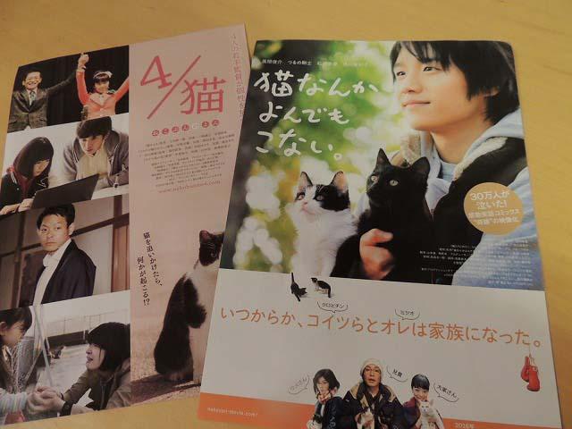 猫映画近日上映DSCN7321