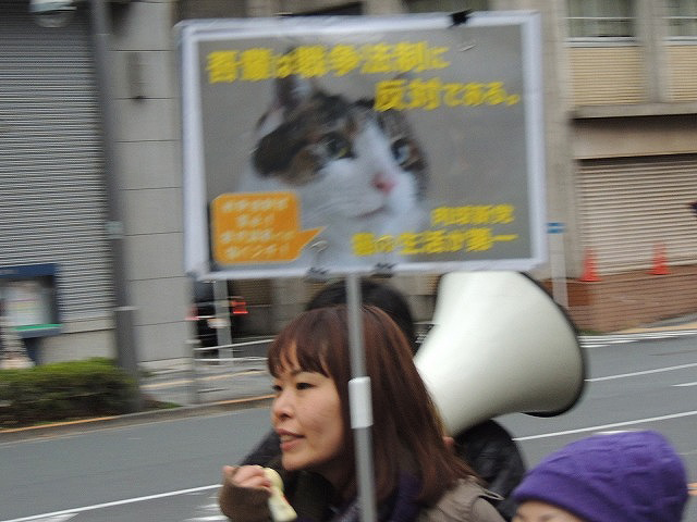 猫プらかDSCN7730