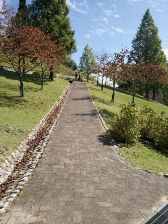 六甲山牧場4