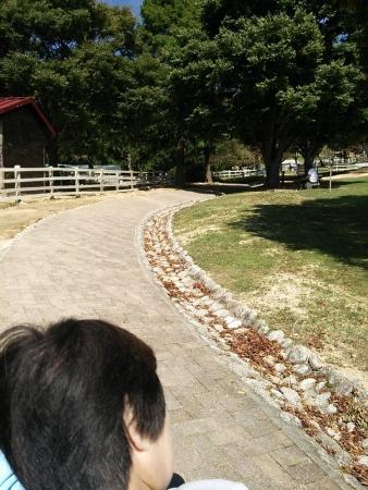六甲山牧場3