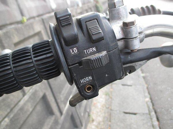 Img_5270-DT1sr-horn.jpg