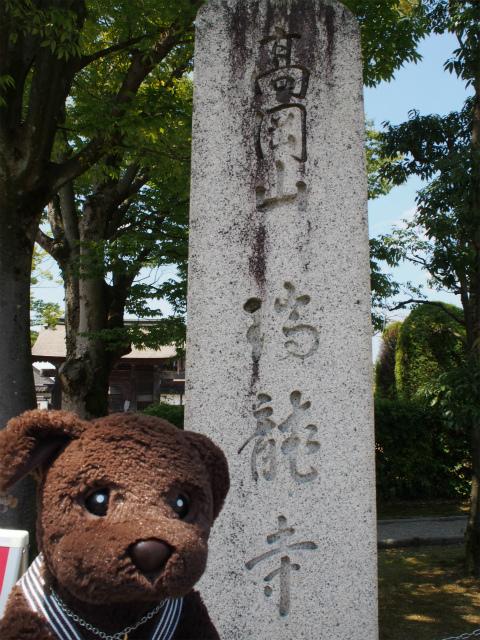 高岡山 瑞龍寺にきたよ