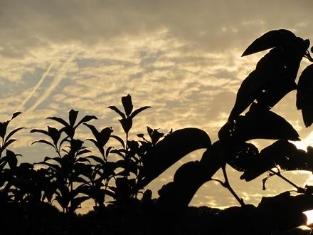 秋の空 3