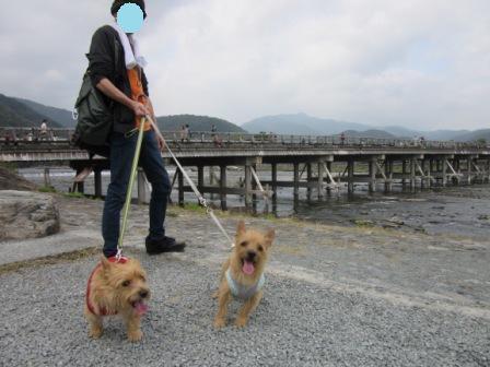 IMG_326215・10・22まと嵐山