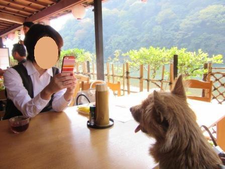 IMG_3353うりママと嵐山