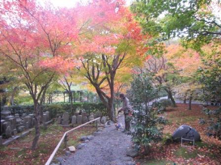 IMG_222712・12嵐山