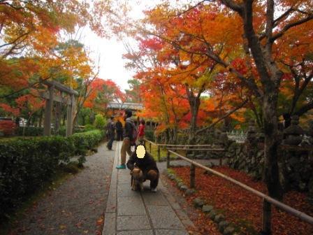 IMG_223312・12嵐山