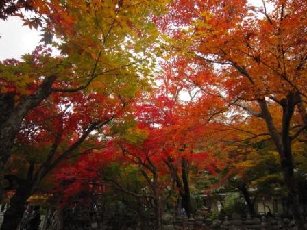 IMG_223412・12・嵐山