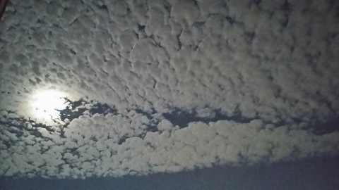 0901 名月とウロコ雲