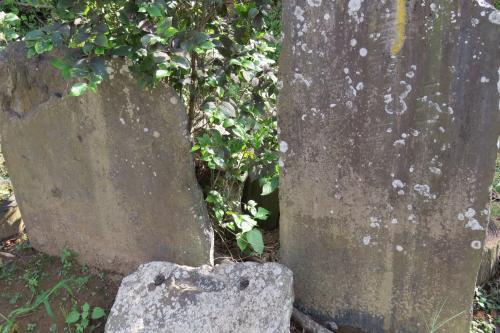 長泉寺ー13