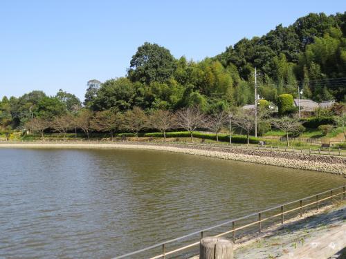 坂田ヶ池ー3
