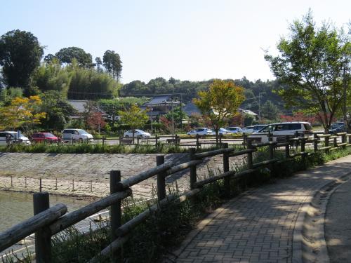 坂田ヶ池ー5