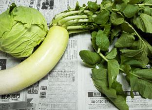 2015119八雲朝取れ野菜1