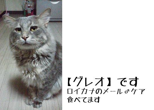 PIC_37mWUJ.jpg