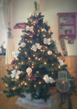 2015.11.15リビングクリスマス2015