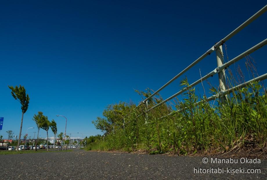 夏のサイクリング中に見た青空