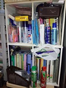 居間のカラーボックス2