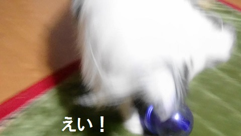 MOV_0408(9).jpg