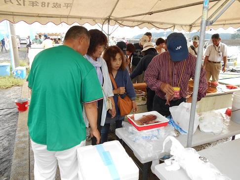 2015引き上げ式 魚販売