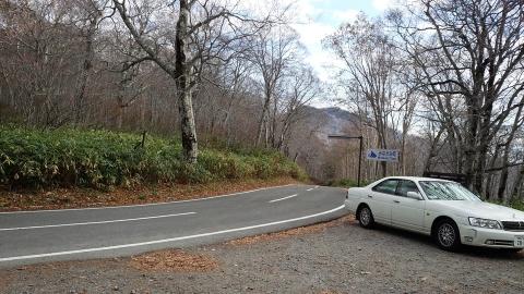 こんろく峠付近は既に落葉していて、ダケカンバだけでした。
